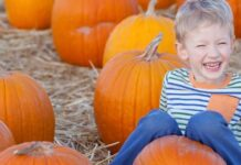 pumpkin picking half term